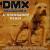 Dmx Wha