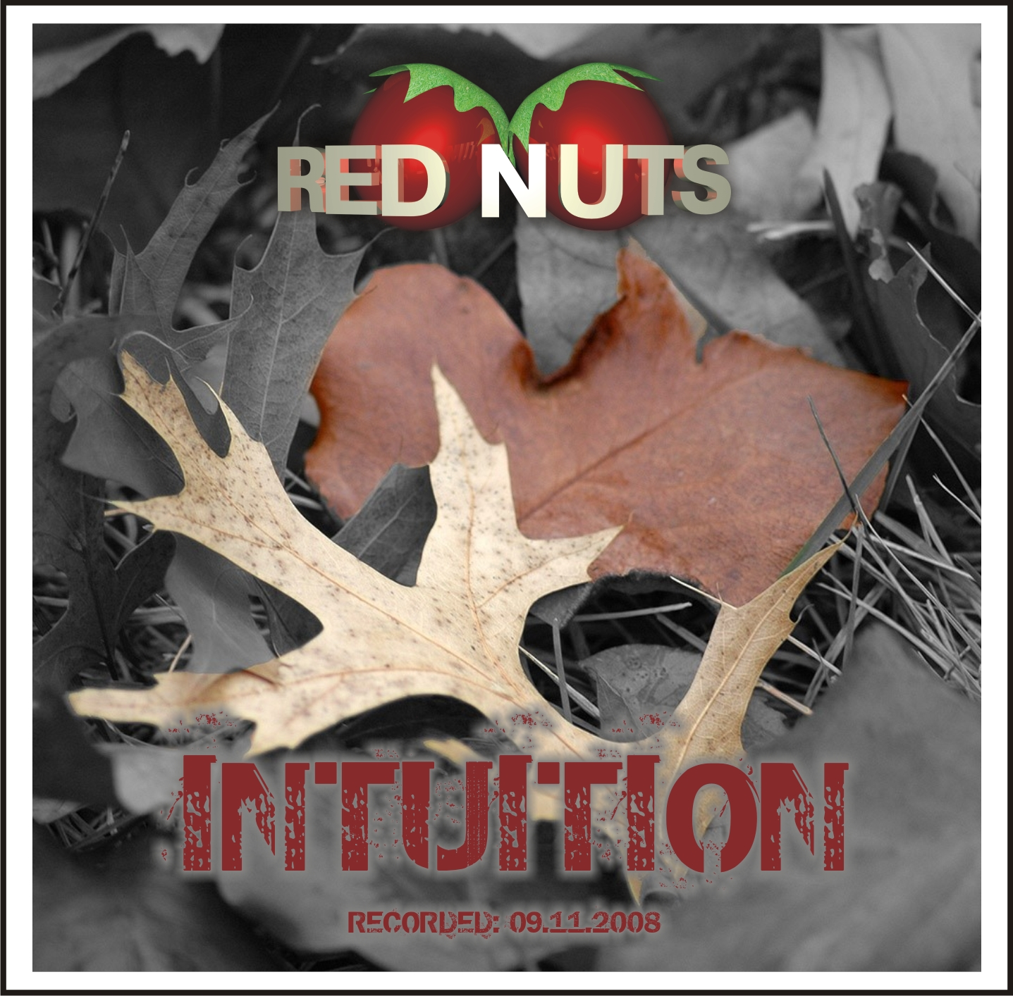 Red Nuts Intuition RGB